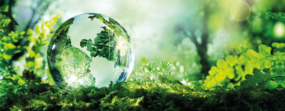 Nachhaltigkeit – TMG Spedition GmbH